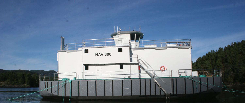Havsterk fôrflåtar HAV300